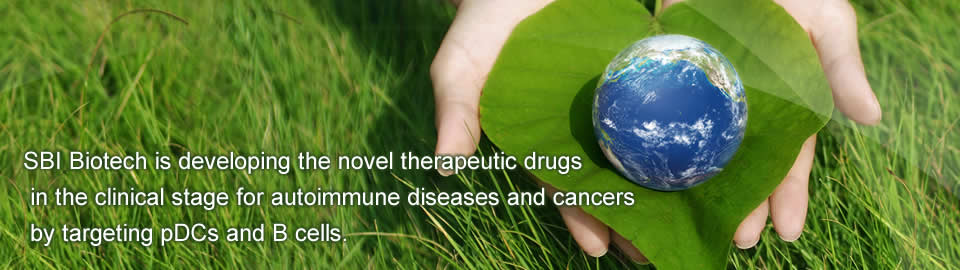 SBI Biotech is developing the novel therapeutic drugs in the pre-clinical stage for autoimmune diseases and cancers by targeting pDCs and B cells.